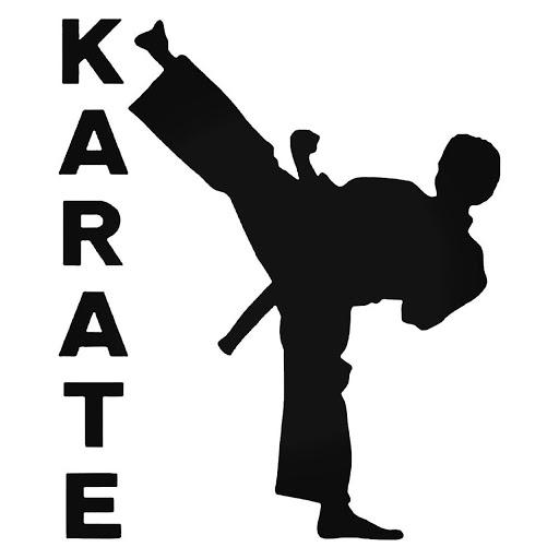 Karaté – classe de 6e de l'Ecole Française de Bâle