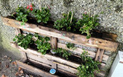 Activité périscolaire élémentaire bricolage – jardinage, les mardis de 16h à 17h : nouveau programme
